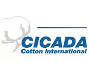 CICADA Cotton International